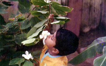 Two year old Arjun