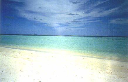 maldivesbeach.jpg